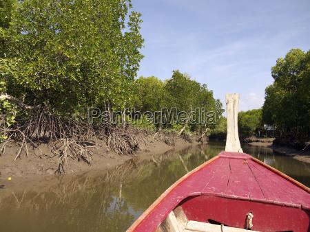boot mangrovenwalder des ko lanta