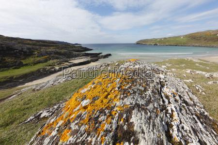 rock with lichen barleycove mizen head