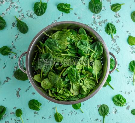 zielone liscie szpinaku w durszlaku zelaza