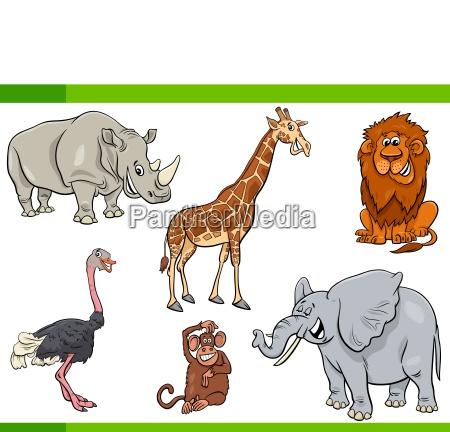 cartoon safari animal characters set