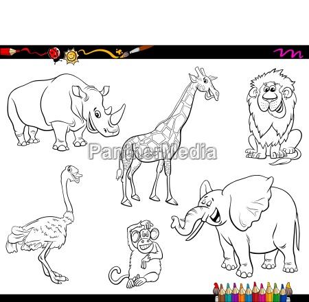 safari cartoon tier zeichen malbuch - Stock Photo - #24681610 ...