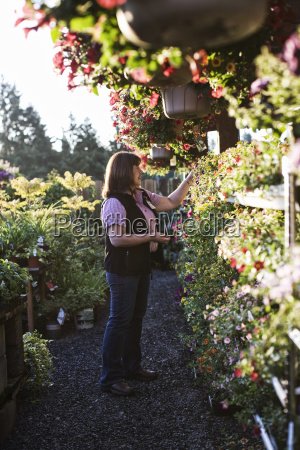 caucasian woman shopping for new plants