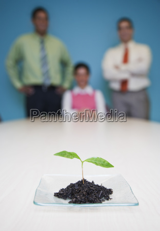 team of three business people standing