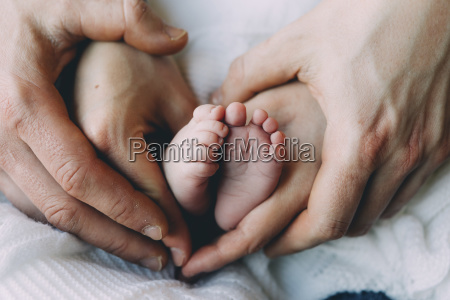 fathers and mothers hands holding babys