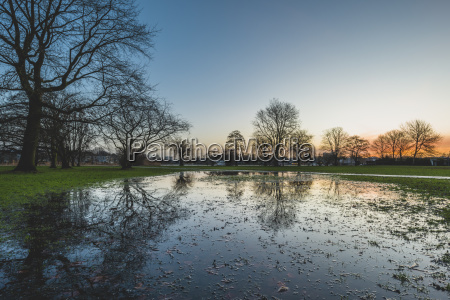 germany hamburg puddle in alsterpark in