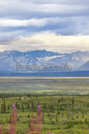 usa alaska landscape at denali highway