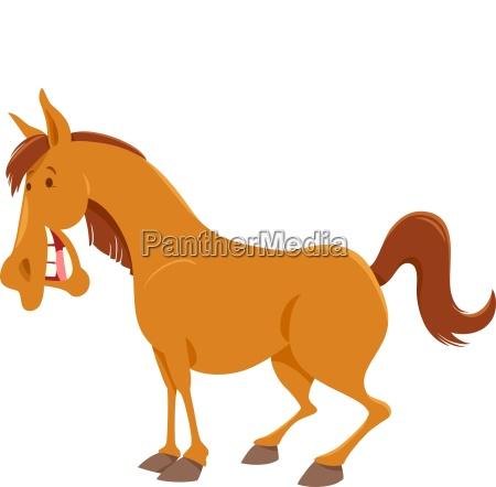 farm horse cartoon animal character