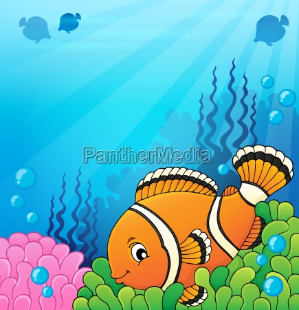 clownfish topic image 4