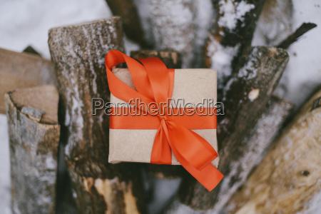 hochwinkelansicht der geschenkbox auf baumstaemmen im