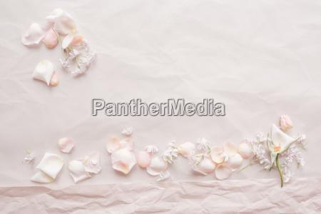 tender pink wedding background