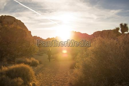 full length of hiker walking on