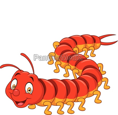 cartoon centipede isolated on white background