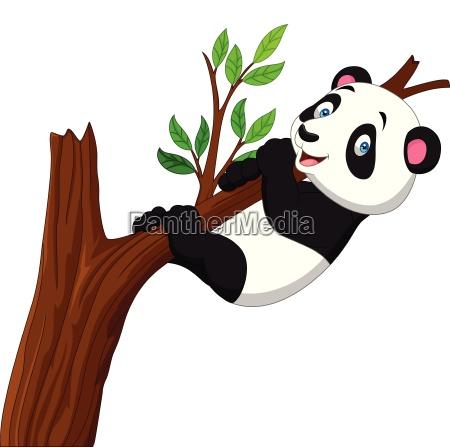 cartoon panda climbing tree