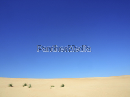 scenic view of desert against clear