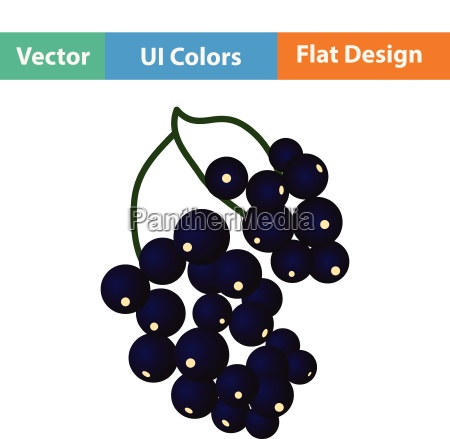 flat design icon of black currant