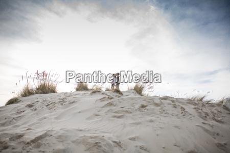 mitteldistanzansicht von den geschwisterdie auf sand