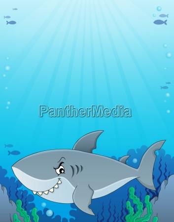 shark topic image 3