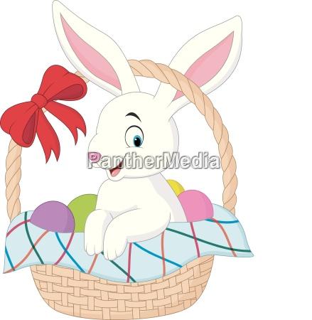 cartoon kaninchen sitzen in einem eimer