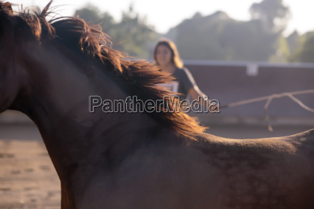 close up of horse with woman