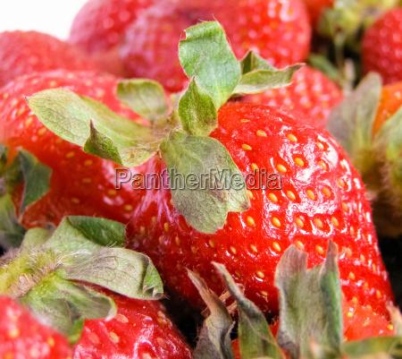 essen nahrungsmittel lebensmittel nahrung frucht obst