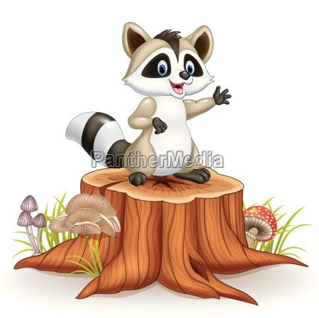 cartoon funny raccoon cartoon waving hand