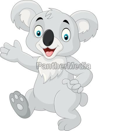 cartoon funny koala isolated on white