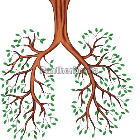 tree lungs cartoon