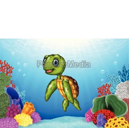 suesse schildkroete mit schoener unterwasserwelt