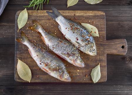 flussfisch kreuzritter und barsch in gewuerzen