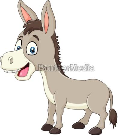 cartoon happy donkey isolated on white