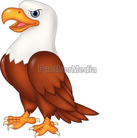 cartoon eagle posing isolated on white