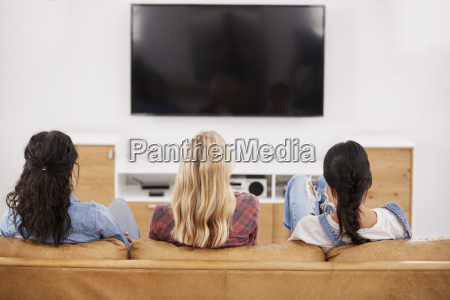 rear view of female friends sitting