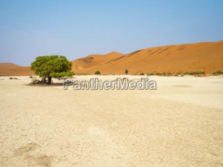 africa namibia namib desert naukluft national