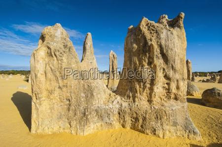 bucolic desert wasteland national park sights