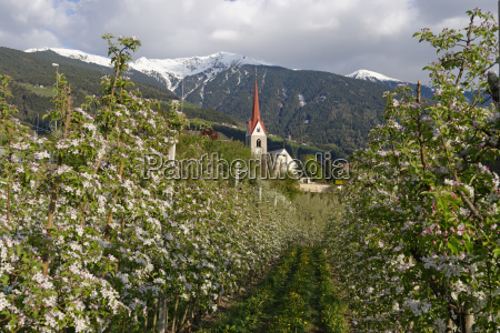 agricultural agriculturally religion church bucolic mountains