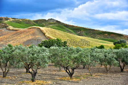 landscape view of calabria in the