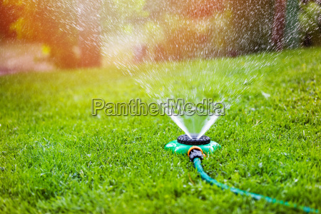 haven sprinkler vanding graes hjemme baggard