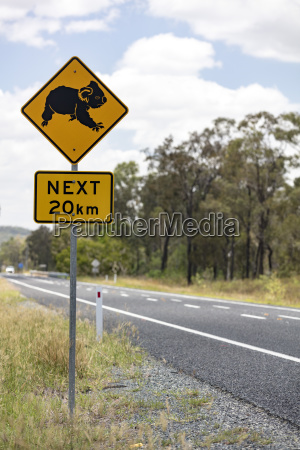 warning sign in front of koala