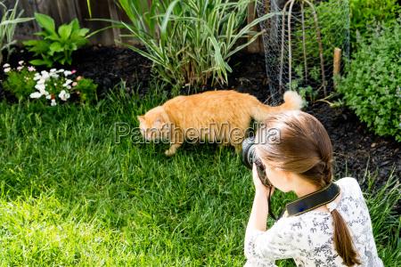 ein maedchen fotografiert eine katze