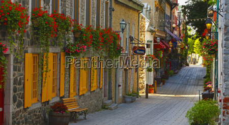 colourful street with shutters and blossoming