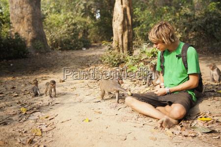 eine touristenattraktionen mit den wilden affen