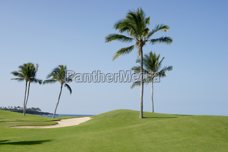 looking over the mauna launi golf