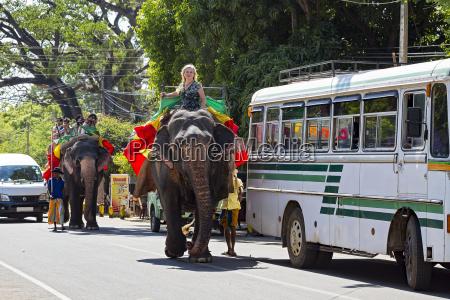 a woman riding a sri lankan
