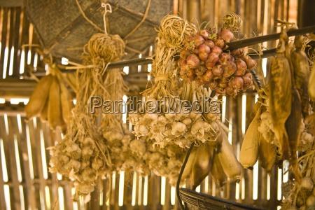 food ingredients tong luang village chiang