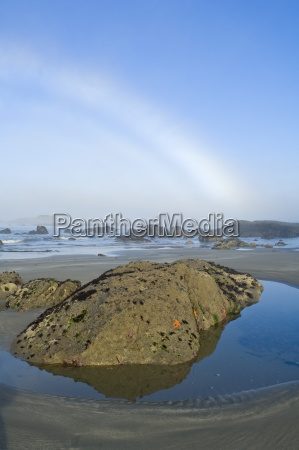 fogbow on olympic coast olympic national