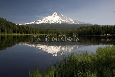 mt hood reflects in trillium lake