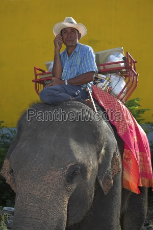 man sitting on an elephant