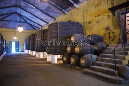 wine barrels in a cellar at