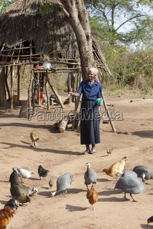 a woman feeding the chickens manica