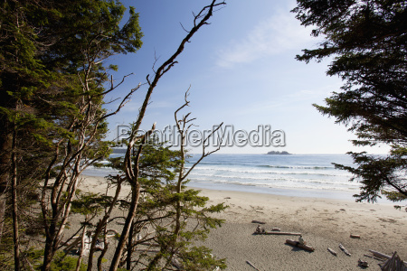 florencia bay in pacific rim national
